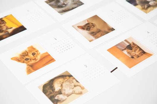 エンジニアさんの家の猫カレンダー