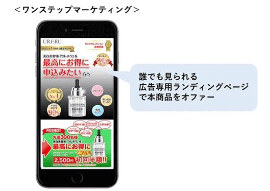 図:誰でも見られる広告専用ランディングページで本商品をオファー