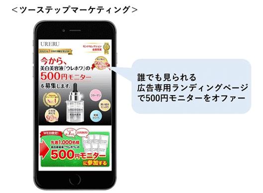 図:誰でも見られる広告専用ランディングページで500円モニターをオファー